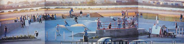 over_view_skate_park_0